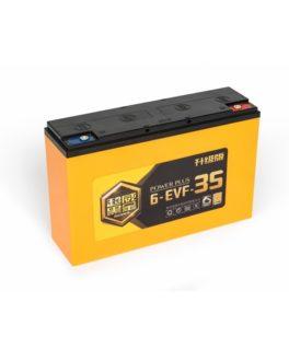 "CHILWEE 6-EVF-35 ""BG"""