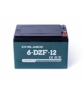 CHILWEE 6-DZM-12